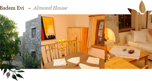 Badem Evi ~ Almond House